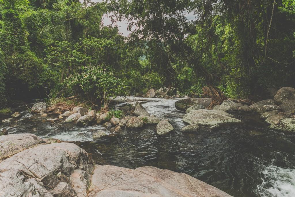 calvez-calvez rio de janeiro estate