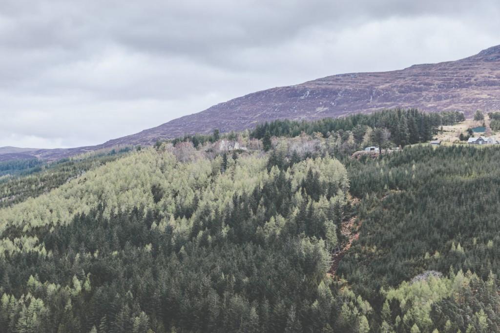 calvez-calvez scotland